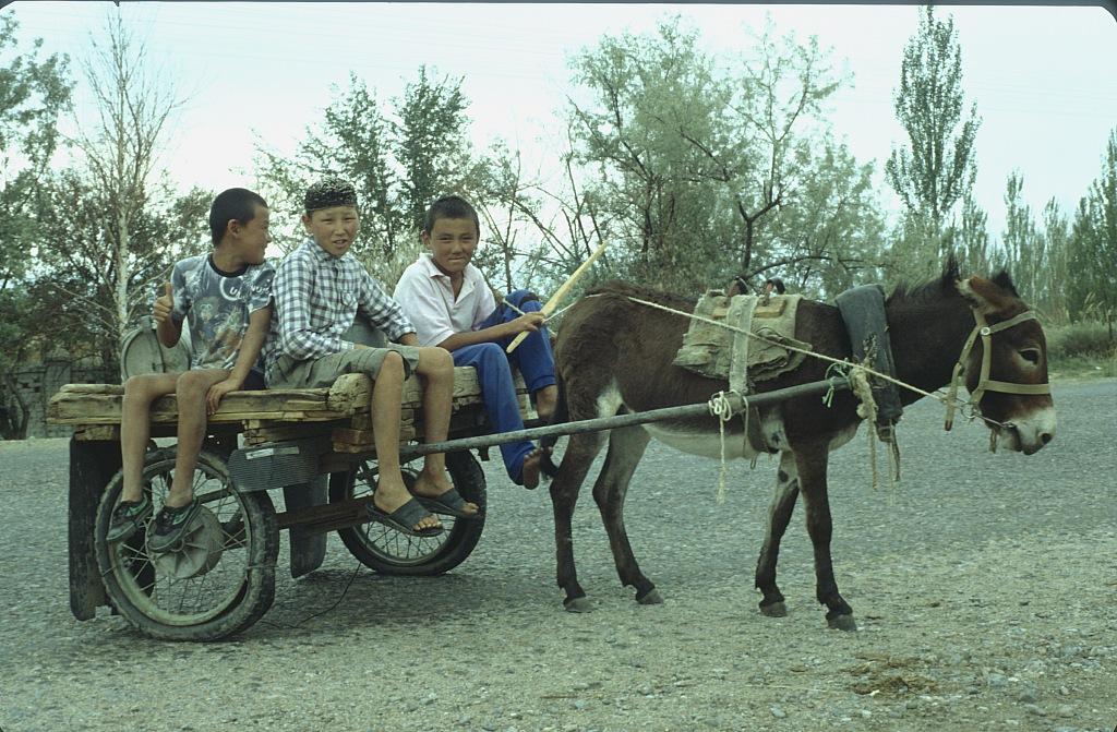 Kirgistan dzieci
