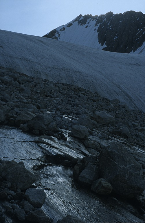 Baranie łby na lodowcu Tienszan