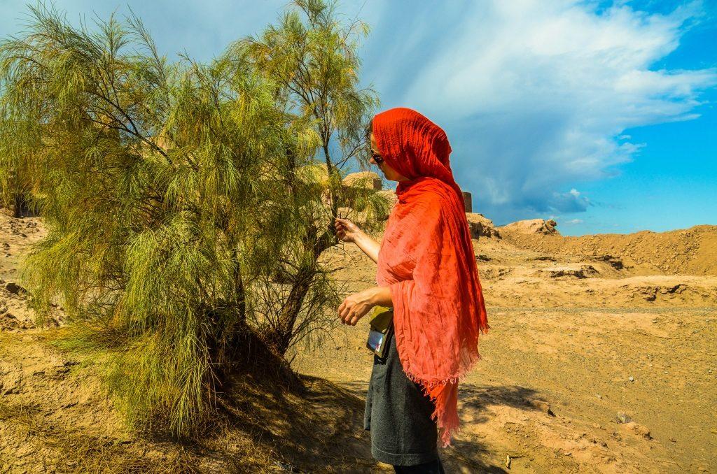 W okolicy rośnie dużo drzew tamaryszku bezlistnego (Tamarix aphylla). U podnóża drzew tworzą się charakterystyczne niewielkie wydmy nazywane nabka (nabkha). Niektóre z takich wydm sięgają nawet paru metrów wysokości, pokryte są dalej roślinnością która przerasta je na zewnątrz.