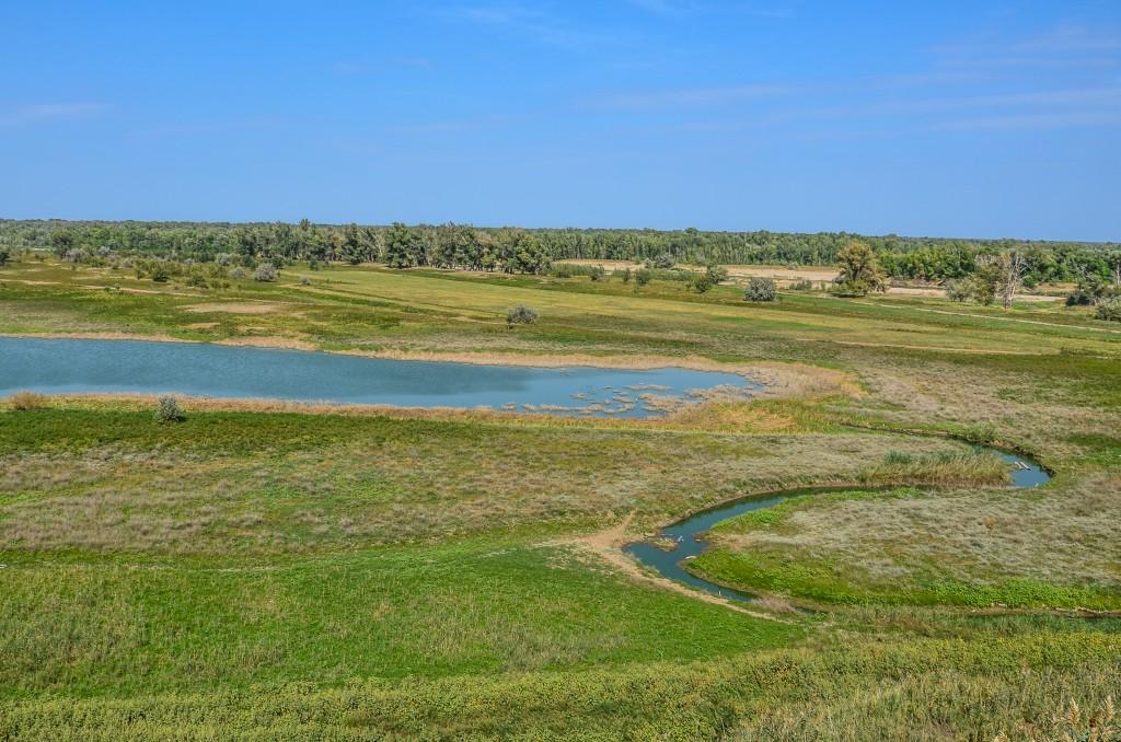 """""""Wołgo – Achtubińska Pojma"""" to obszar rozlewisk i starorzeczy rozciągający się pomiędzy rzekami Wołgą a Achtubą będącą północną odnogą Wołgi na długości prawie 400 km. Od Wołgogradu do Astrachania gdzie zaczyna się delta Wołgi."""