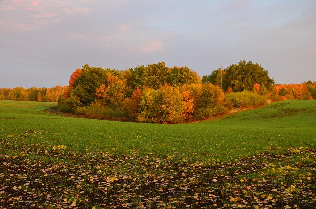 Rosyjska Złota jesień