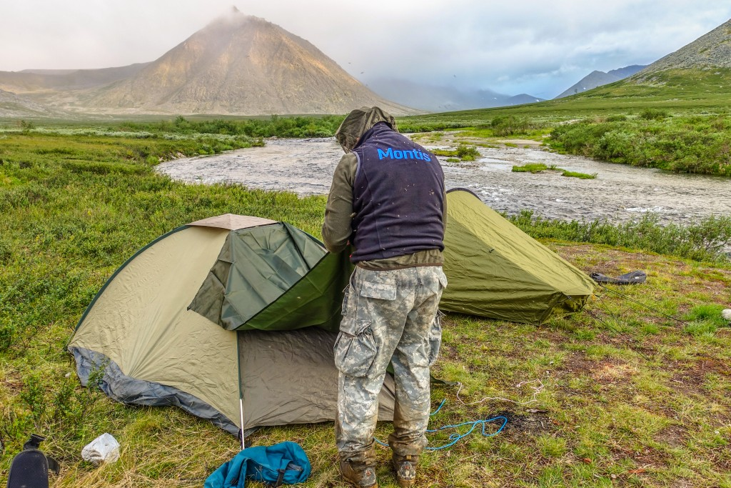 Komary w górach Ural Subpolarny