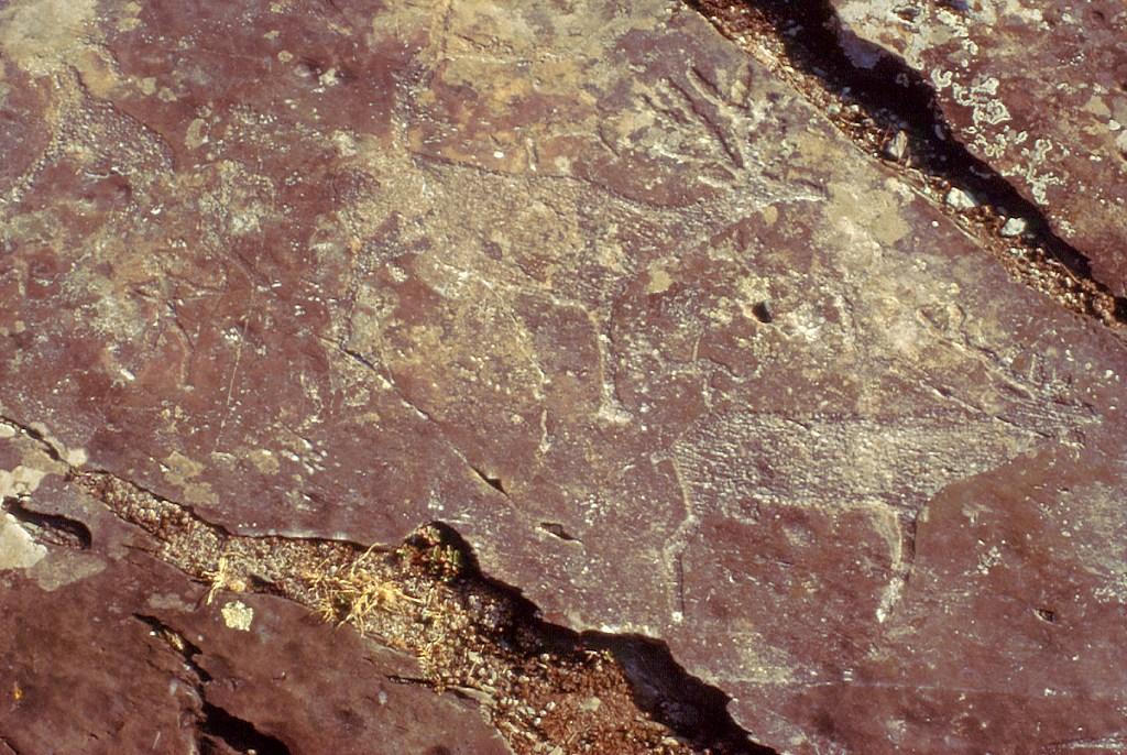 Petroglify z uroczyska Kalbak-Tasz Калбак-Таш