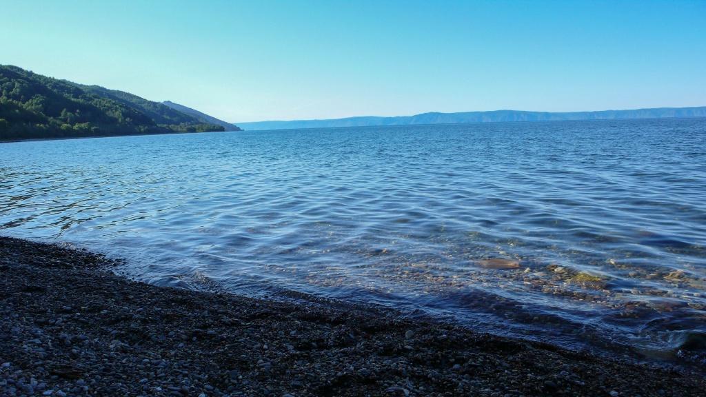 Woda w Bajkale jest bardzo przejrzysta co zawdzięcza w dużej mierze małemu endemicznemu skorupiakowi Epischura baikalensis który filtruje wodę z substancji organicznych. Stanowi on 80% masy zooplanktonu. Ponad połowa gatunków fauny w jeziorze to endemity