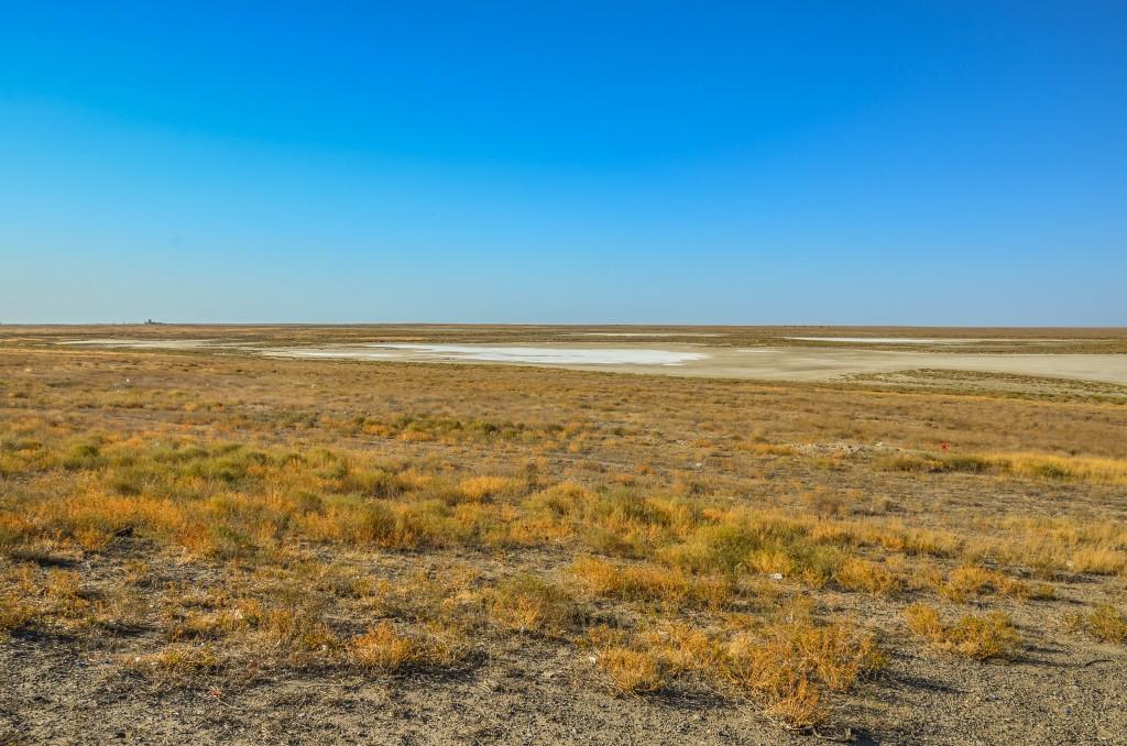 Jedziemy przez rozległy obszar niewielkich słonych jeziorek pomiędzy miejscowościami Dossor a Kulsary.