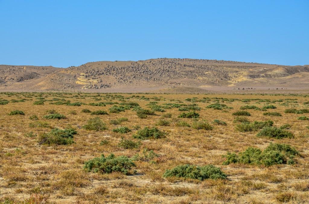 Krajobraz mangyszłak