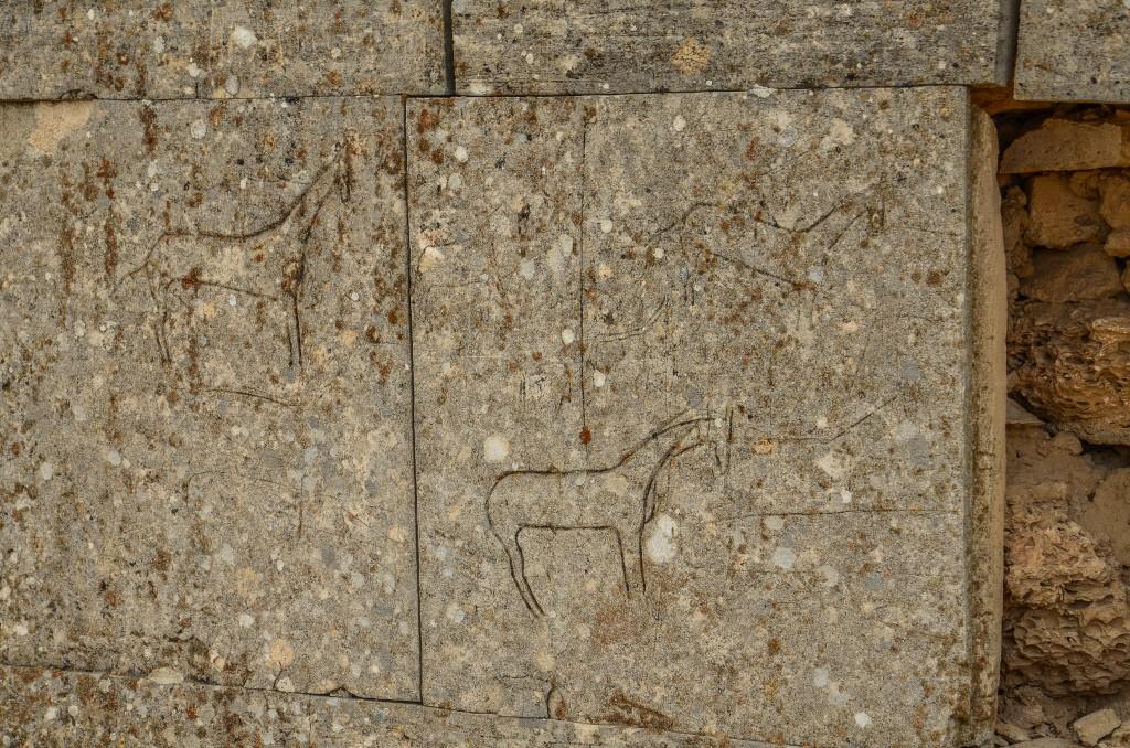 petroglify kazachstan
