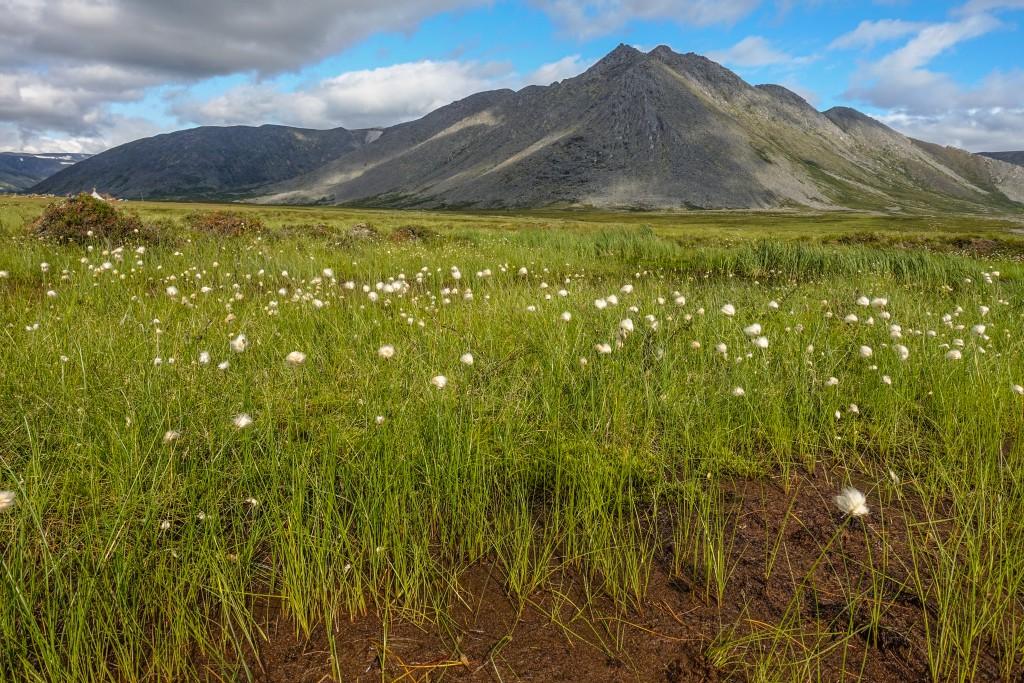 Góry Ural park narodowy Jugyd wa