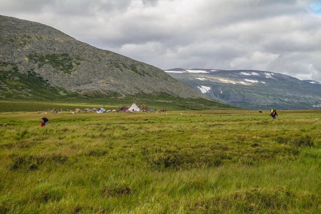 obozowisko pasterzy reniferów na Uralu Subpolarnym