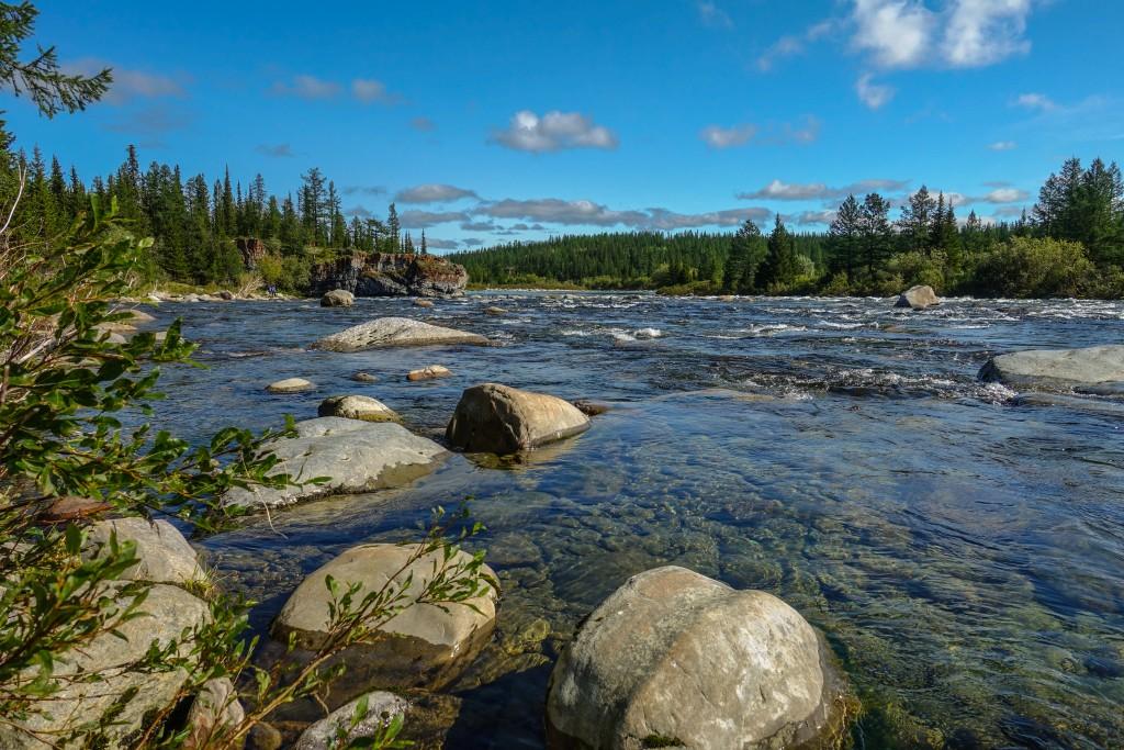 Góry Ural Subpolarny Park narodowy Jugyd wa