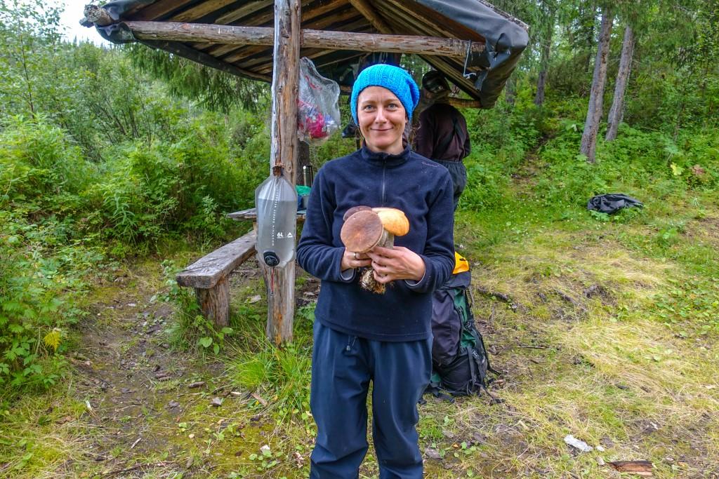 grzybobranie Ural Rosja