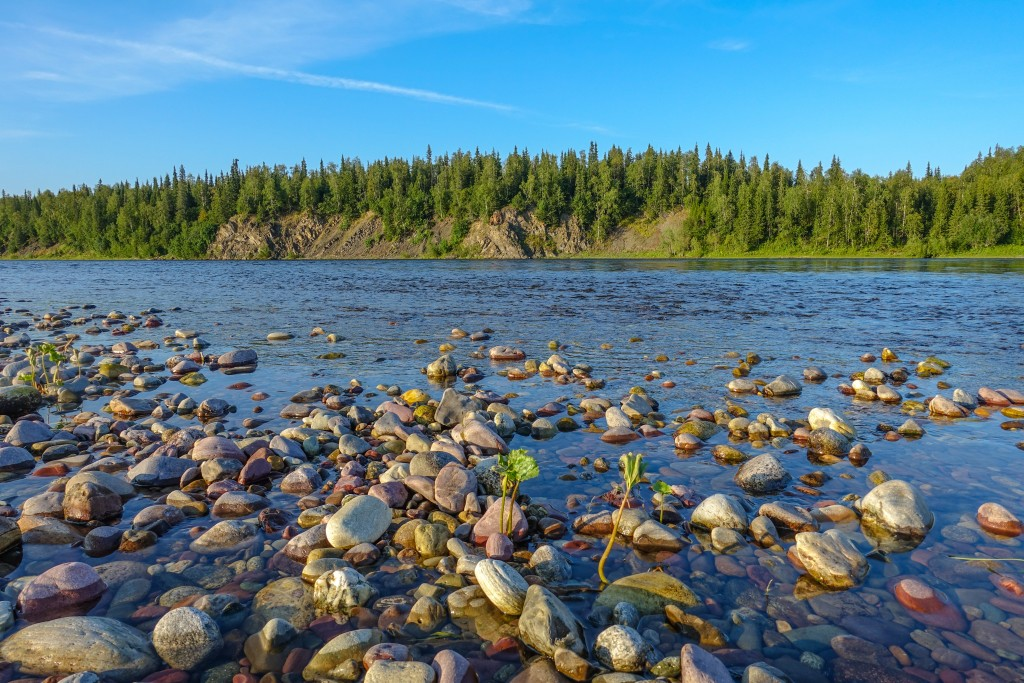 rzeka Republika Komi. Ural